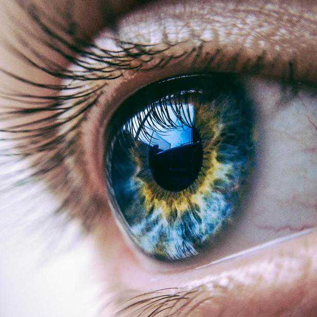 The Origins Of Eye Color